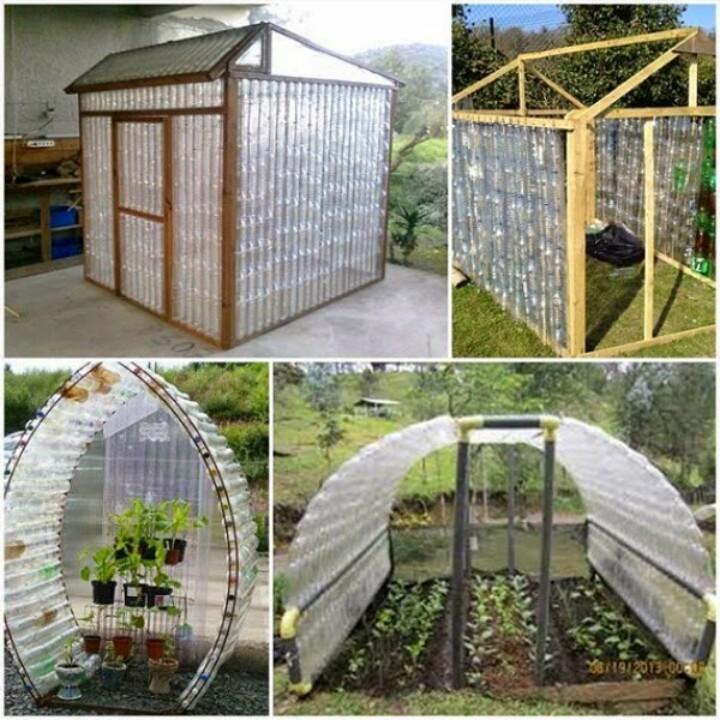 Greenhouse2ltrPlstc